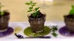 Black Truffle Portobello Wild Rice Broth